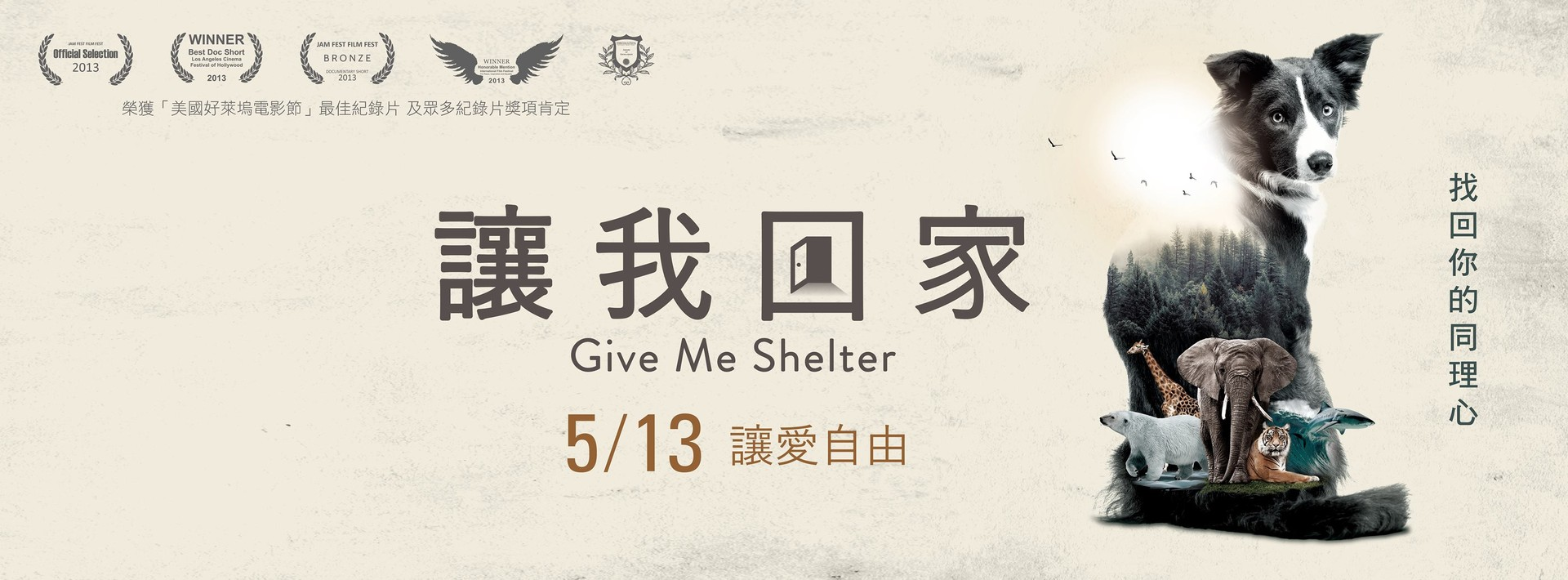 give me shelter cover